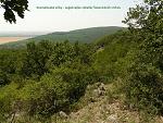 Zlaté Moravce, FK: image 21of69