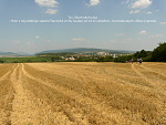 Zlaté Moravce, FK: image 24of69