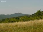 Zlaté Moravce, FK: image 61of69