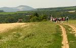 Zlaté Moravce, FK: image 67of69